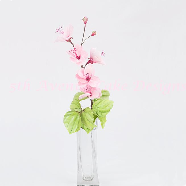 CherryBlossomFlowers1324