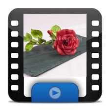 Rosebud-openicon